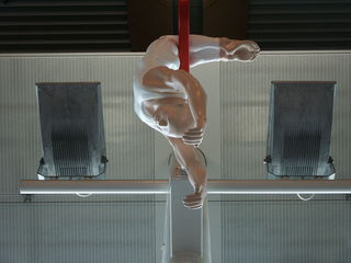 The acrobats hanging in Wellington airport.