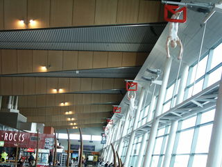 Wellington airport.